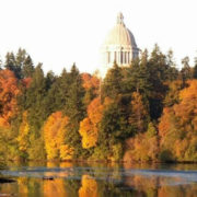Washington State Needs FP Physician