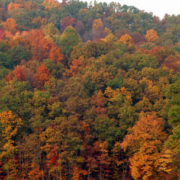 West Virginia Seeks Family Medicine Physician